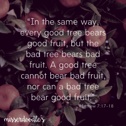 Bearing fruit…
